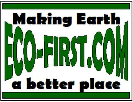 2011 Eco-First logo